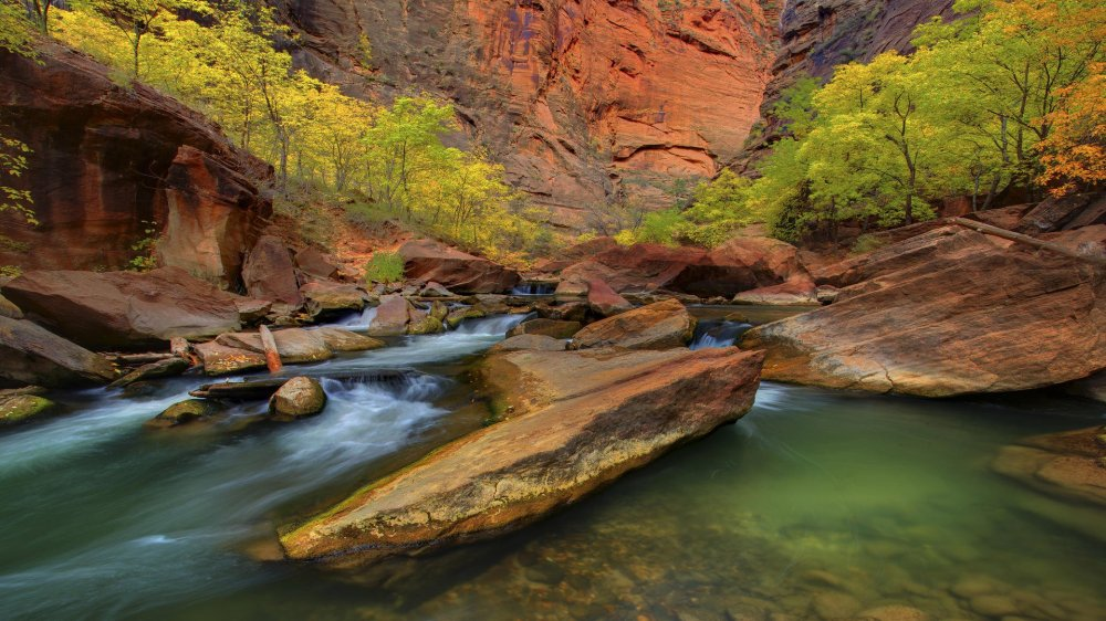 zion-national-park-stream in desert